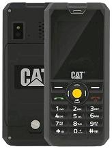 Cat B30